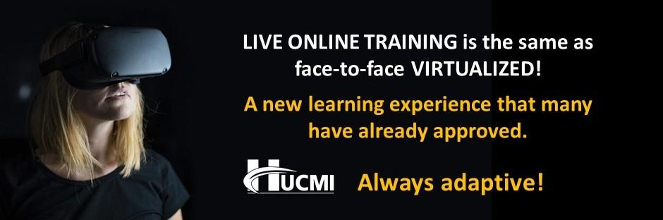 Treinamento_Virtual_HCMBOK_Banner_Ingles1